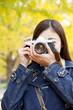 銀杏をカメラで撮る女性