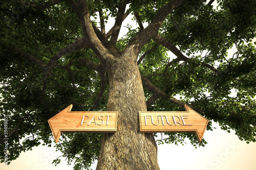 environment past future tree sign