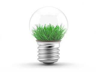 Grass in a lamp bulb - ecology concept