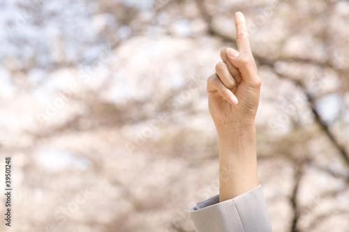 桜を指差すOLの手元