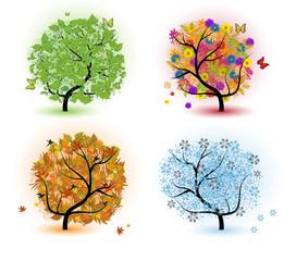 tree of seasons - spring, summer, autumn, winter.