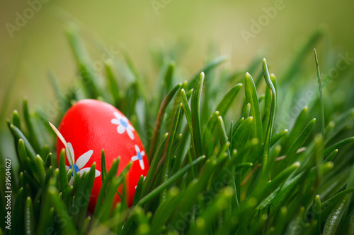 red easter egg in grass