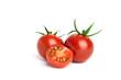 Leinwanddruck Bild - frische Tomaten