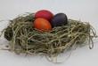 Drei Eier im Osternest