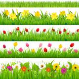 Fototapety Flower Borders Set
