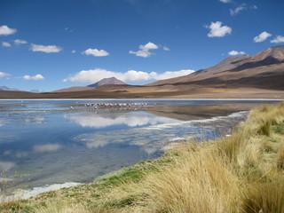 Laguna Canapa, Salar de Uyuni