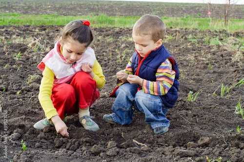 Two little children planting seeds