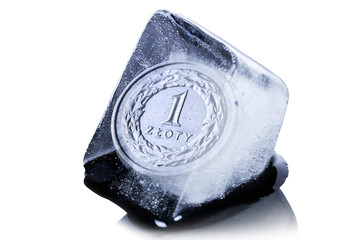 Polish zloty coin frozen into the ice cube
