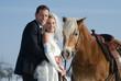 Quadro Brautpaar mit Pferd im Winter