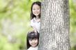 木の陰から顔を出す2人の女の子