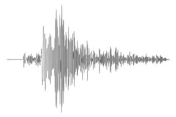 Earthquake - seismogramm