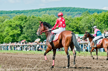 jockey on racing horse before the start