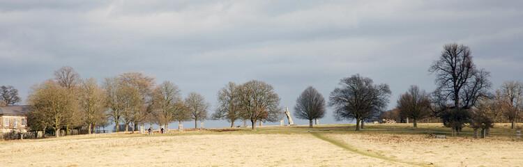 Landscape of Richmond Park