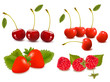 Big group of fresh berries.  Vector illustration