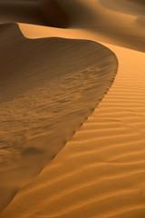 Desert Dune of Abu Dhabi