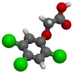 2,4,5-Trichlorophenoxyacetic acid (2,4,5-T), molecule (3D)