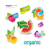 Set of stickers and icons of healthy and organic food. Vector