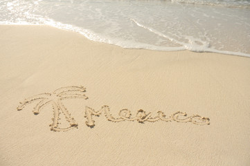 Mexico and a Palm Tree Drawn in Sand on Beach