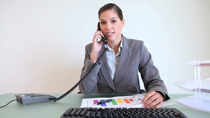 Businesswoman checking documents