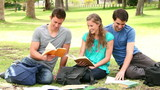 Three friends talking and laughing as they study books while sitting in a park