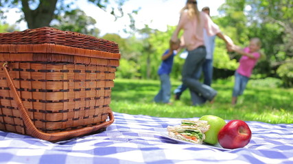 Family together in the background with a platter on a picnic