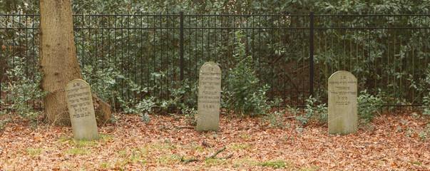 An old jewish graveyard