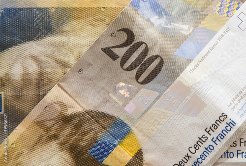 Swiss Francs money