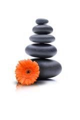 Steine mit Blume