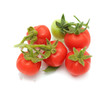 Red and Green Cherry Tomatoes Isolated on White Background