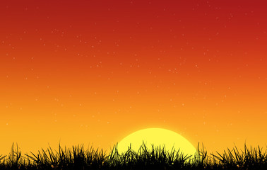 Silhouette of sun and  grass
