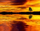 Fototapeta niebo - natura - Jezioro / Staw