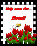 Help save the honey bees! Checkerboard frame, bright red tulips
