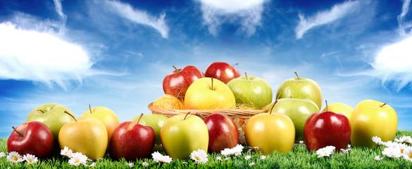 Gruppo di mele assortite