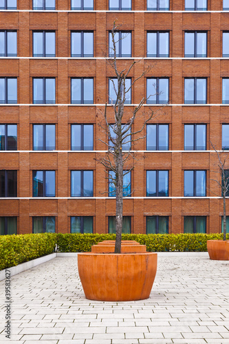 facade of modern brick building with a tree in front
