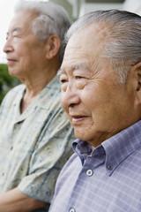 Profile of two elderly men