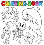 Coloring book various sea animals 2
