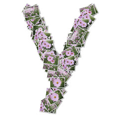 Alphabet flower Font, made from flower photo.