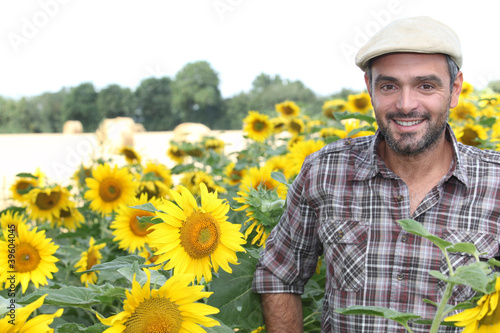 Man stood in field of sunflowers