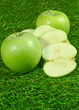Apfel - Apple