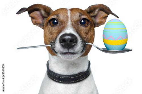 Hund mit Löffel und Osterei