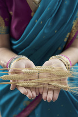 Close up of grain in Indian woman's hands