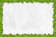 shamrock border on paper with place for your text