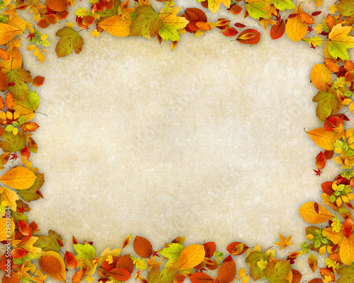 Autumn leaves frame on old paper background
