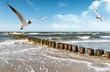 Fototapeten,ostsee,stranden,gull,surfen