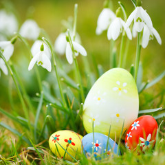 easter eggs in grass and snowdrops