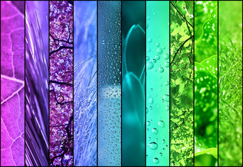 nature color collage