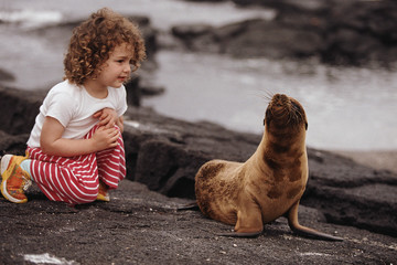 Young girl looking at baby seal on rocks