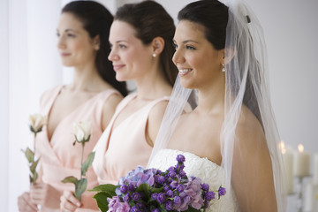 Hispanic bride and bridesmaids in row