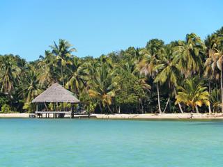 Beach and palapa