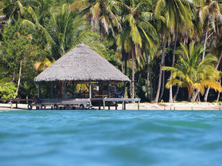 Tropical thatched hut